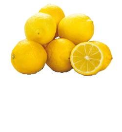 Citróny Primofiori 4/5 ES čerstvé 1x9,5 kg