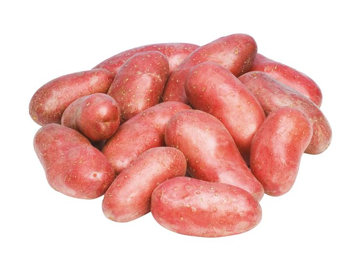 Konzumné zemiaky neskoré ružové