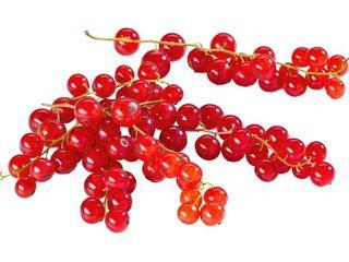 Obrázok Ríbezle červené