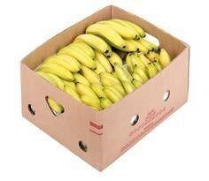 Obrázok Banány 18+ čerstvé 1x18,14 kg kartón